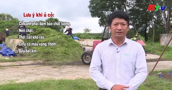 Kỹ thuật ủ cỏ