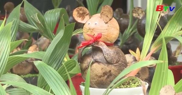 Bonsai dừa tại hình chuột độ đáo