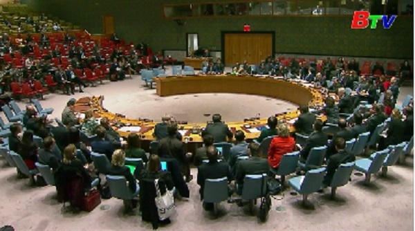 LHQ gia hạn sứ mệnh gìn giữ hòa bình tại Somalia và CHDC Congo