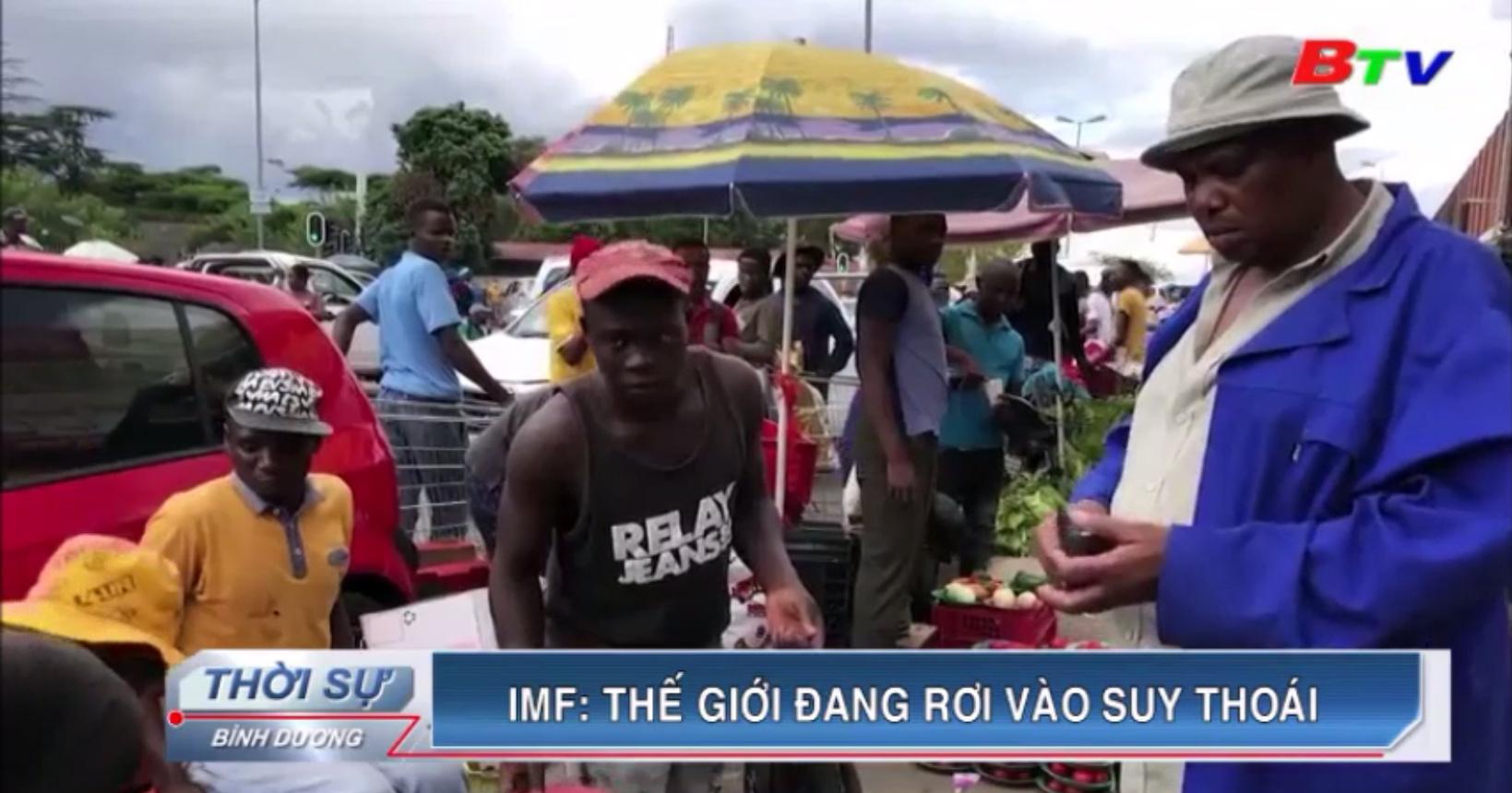 IMF - Thế giới đang rơi vào suy thoái