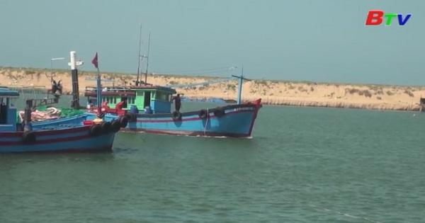 EC sẽ xem xét lại vấn đề thẻ vàng với hải sản Việt Nam vào tháng 1/2019