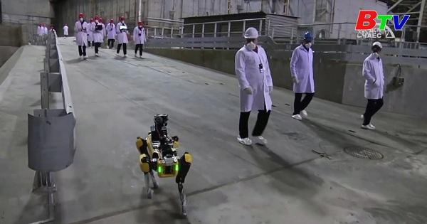 Dùng chó Robot để đo phóng xạ tại Chernobyl, Ukraine