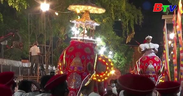 Những chú voi trong lễ diễu hành phật giáo đầy màu sắc ở Sri  Lanka