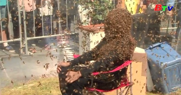 Canada lập kỷ lục Guiness về bộ râu ong