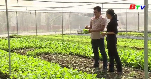 Gặp gỡ người nông dân quyết tâm làm giàu từ sản xuất nông nghiệp