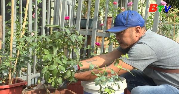 Thú chơi hoa hồng