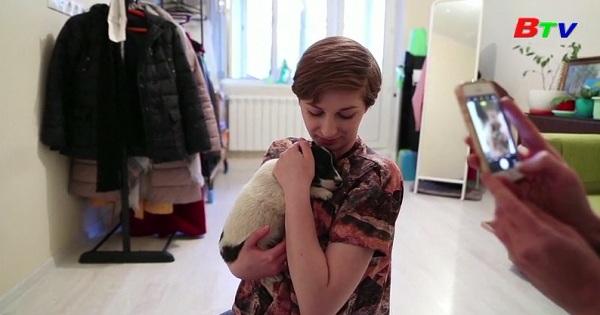 Hàng chục chú chó mèo được nhận nuôi trong thời kỳ phong tỏa ở Nga