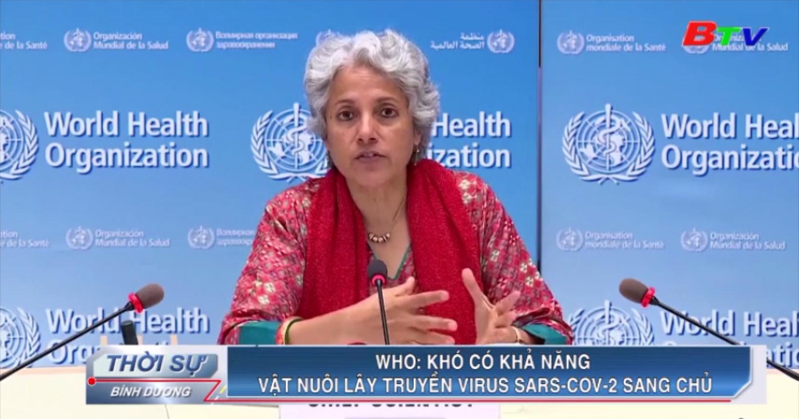 WHO - Khó có khả năng vật nuôi lây truyền virus SARS-CoV-2 sang chủ