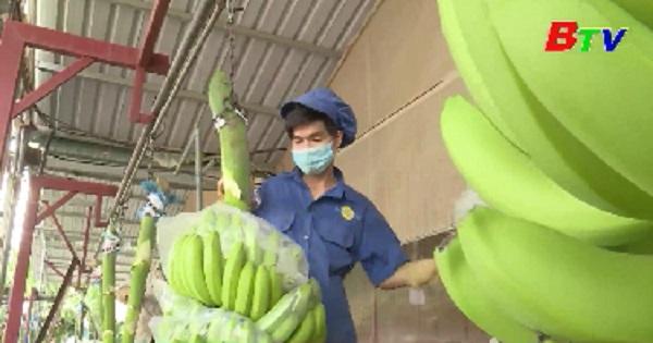 Phú Giáo ổn định sản xuất kinh doanh đầu năm