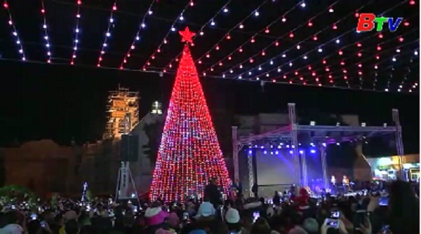 Chiêm ngưỡng cây thông Noel khổng lồ ở Bethlehem