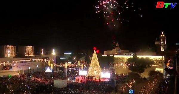 Thắp sáng cây thông Noel khổng lồ ở Bethlehem