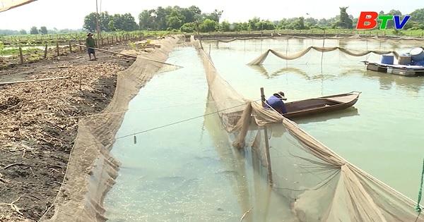 Công tác quản lý nuôi thủy sản ở Bình Dương