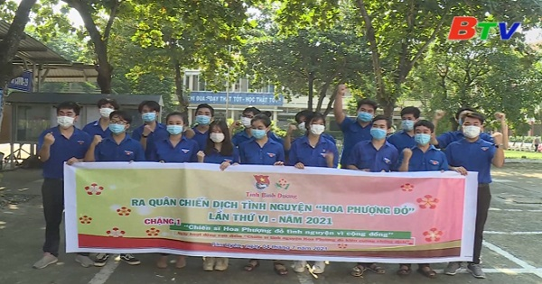Chiến dịch Hoa phượng đỏ của Đoàn trường THPT Huỳnh Văn Nghệ