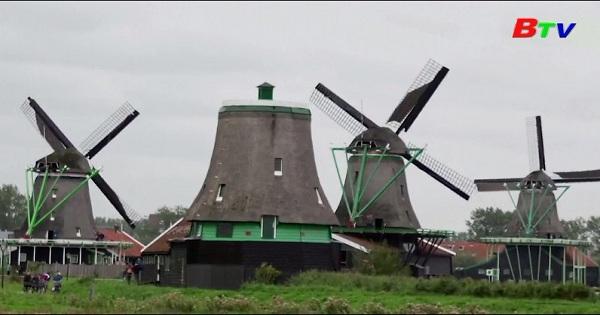 Hà Lan sản xuất sơn thân thiện môi trường từ nguyên liệu địa phương