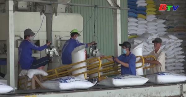 Gạo xuất khẩu sẽ được gắn logo quóc gia