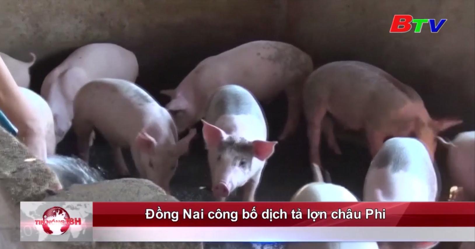 Đồng Nai công bố dịch tả lợn châu Phi