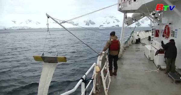 Rác thải nhựa xâm lấn Nam Cực