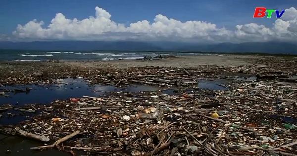 Guatemala - Dựng hàng rào sinh học làm sạch rác thải