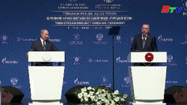 Lãnh đạo Thổ Nhĩ Kỳ, Nga nhất trí kêu gọi ngừng bắn tại Libya