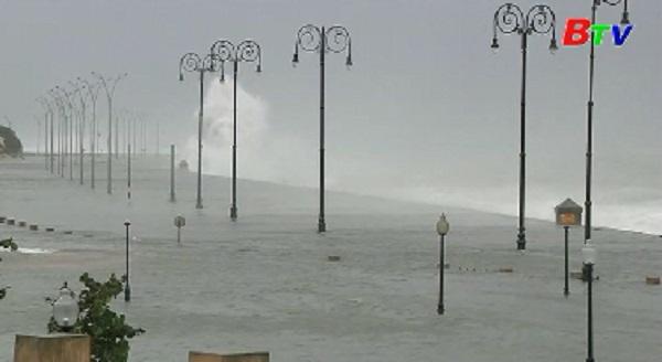 Bão Irma quét qua các thành phố lớn bang Florida