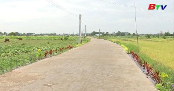 Mô hình tuyến đường hoa ở xã nông thôn mới