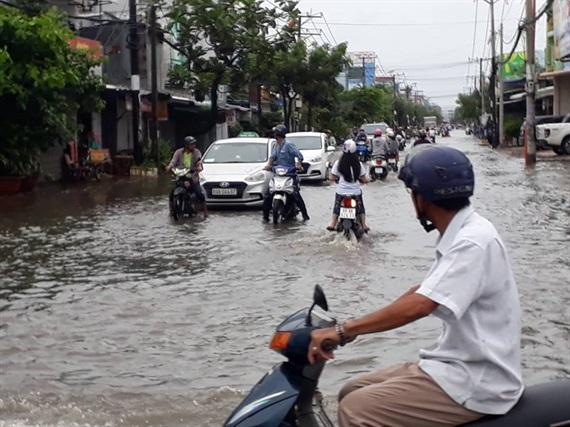 Mưa lớn gây ngập úng ảnh hưởng mùa vụ tại Cà Mau