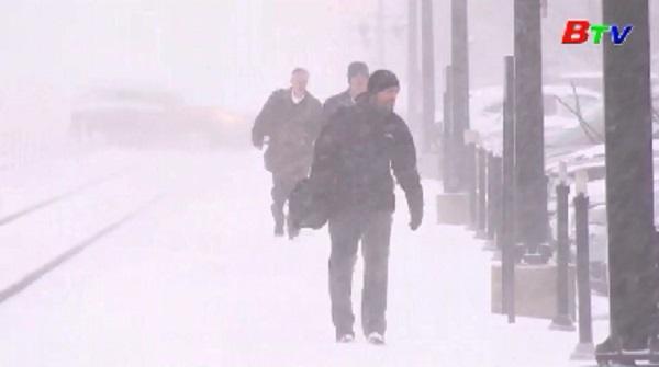 Nhiều bang tại Mỹ chìm trong giá lạnh bất thường