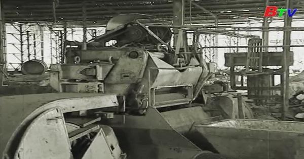 Cao su Dầu Tiếng hình thành và phát triển - Tập 2: Ra đời công ty cao su Dầu Tiếng