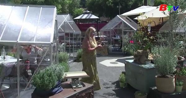 Thưởng thức cà phê trong những cabin kiính ở Los Angeles, Mỹ