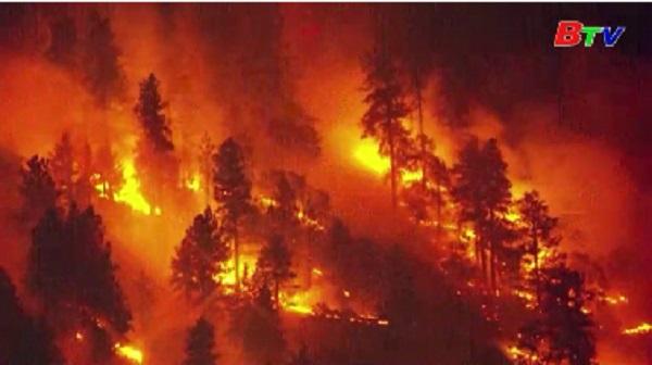 Mỹ - Sơ tán do cháy rừng ở Los Angeles