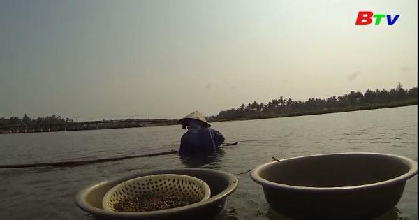 Hương vị Don ở Quảng Ngãi