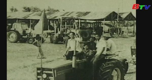 Cao su Dầu Tiếng - Hình thành và phát triển: Tập 3- Những vườn cao su Việt - Xô