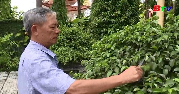 Phạm Văn Hải - Một cựu chiến binh làm kinh tế giỏi