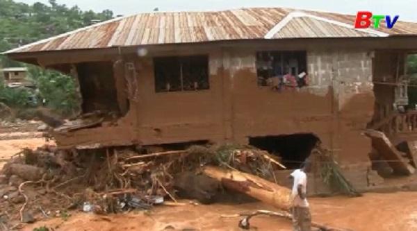 Hơn 300 người thiệt mạng trong vụ lở đất ở Sierra Leone