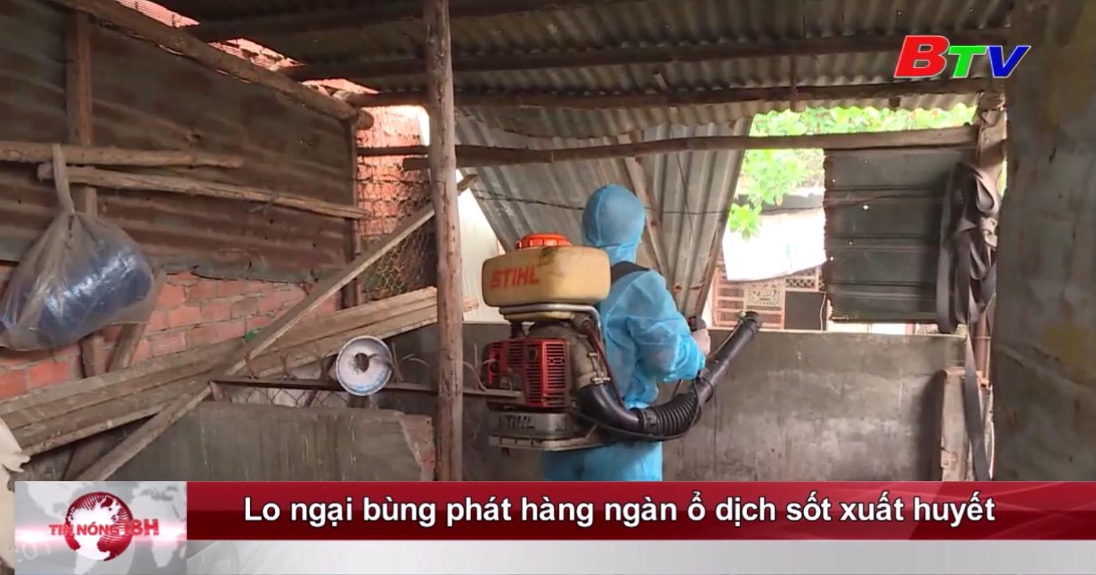 Lo ngại bùng phát hàng ngàn ổ dịch sốt xuất huyết