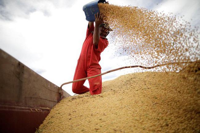 Trung Quốc sẽ dỡ bỏ áp thuế bổ sung đối với đậu tương và thịt lợn nhập khẩu từ Mỹ