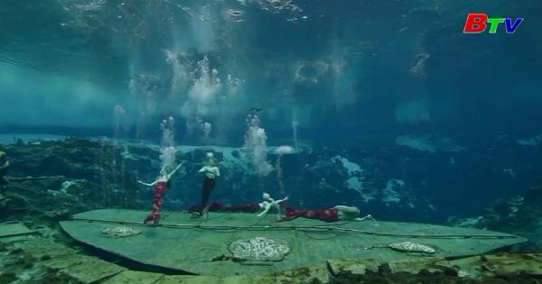 Bơi tới giấc mơ trở thành nàng tiên cá