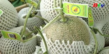 Nâng cao chất lượng nông sản cung ứng thị trường