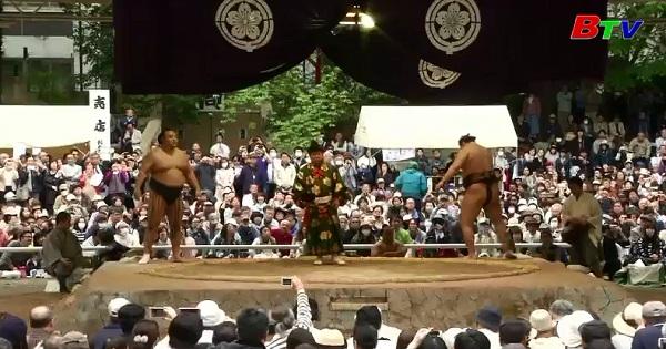 Đấu vật Sumo đánh dấu lễ hội mùa xuân tại Nhật Bản