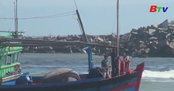 Việt Nam cầu thị và minh bạch trong kiểm tra khai thác cá bất hợp pháp, không được báo cáo và không được quản lý IUU
