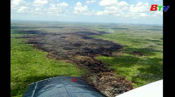 Cháy rừng trên diện rộng tại Mexico
