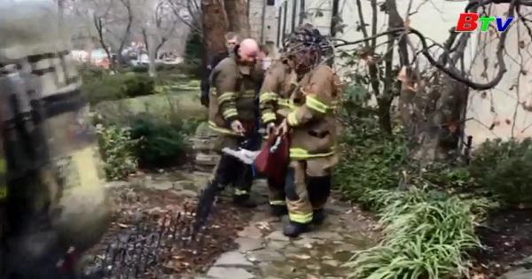 Chú chó  may mắn được cứu sống trong một vụ hỏa hoạn