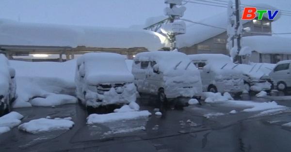 Tuyết rơi dày gây gián đoạn giao thông ở Nhật Bản