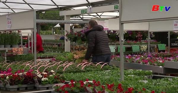 Các siêu thị làm vườn ở Anh mở cửa lại