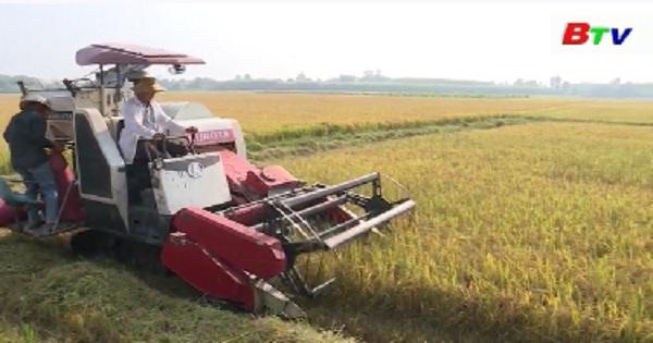 Bất cập trong việc chuyển nhượng quyền sử dụng đất nông nghiệp