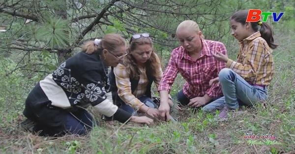 Bà cụ Mexico đi đầu trong chiến dịch trồng hàng triệu cây xanh