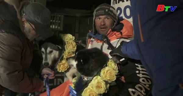 Kết quả chung cuộc cuộc đua chó kéo khắc nghiệt nhất tại Alaska - Mỹ