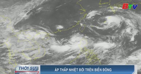 Tin áp thấp nhiệt đới gần bờ