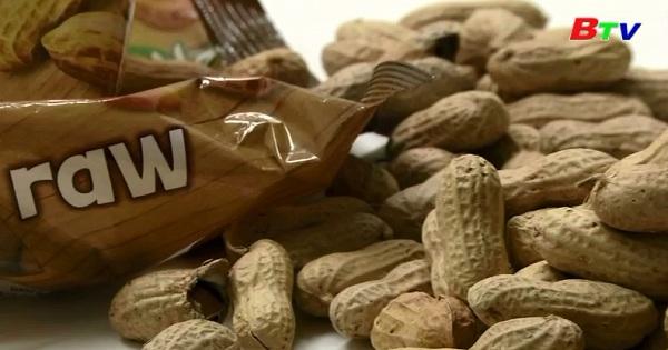 Ngừa dị ứng đậu phộng bằng các sản phẩm đậu phộng