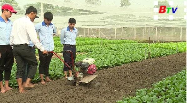 Nghề trồng trọt và chăn nuôi